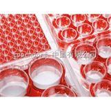 Eppendorf 细胞培养板 培养皿