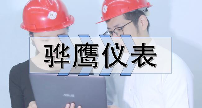骅鹰仪表 打造专业自动化仪表品牌