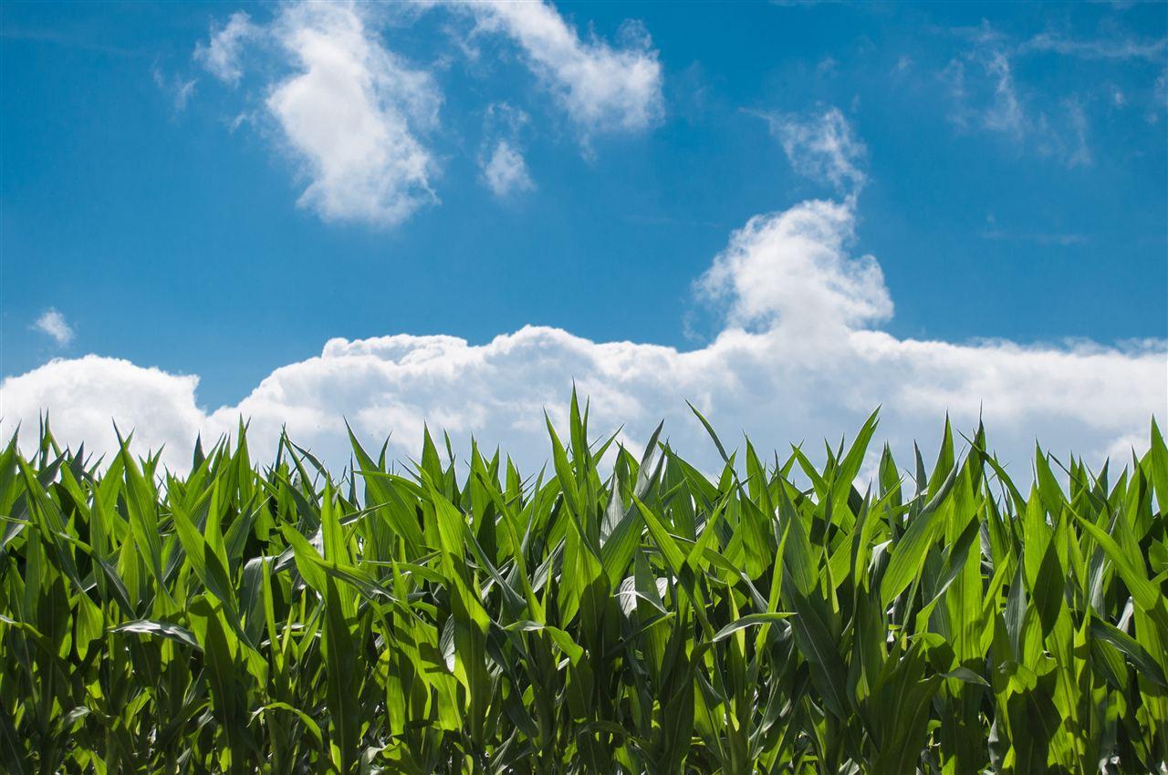助力现代化农业发展 这些科学仪器发力