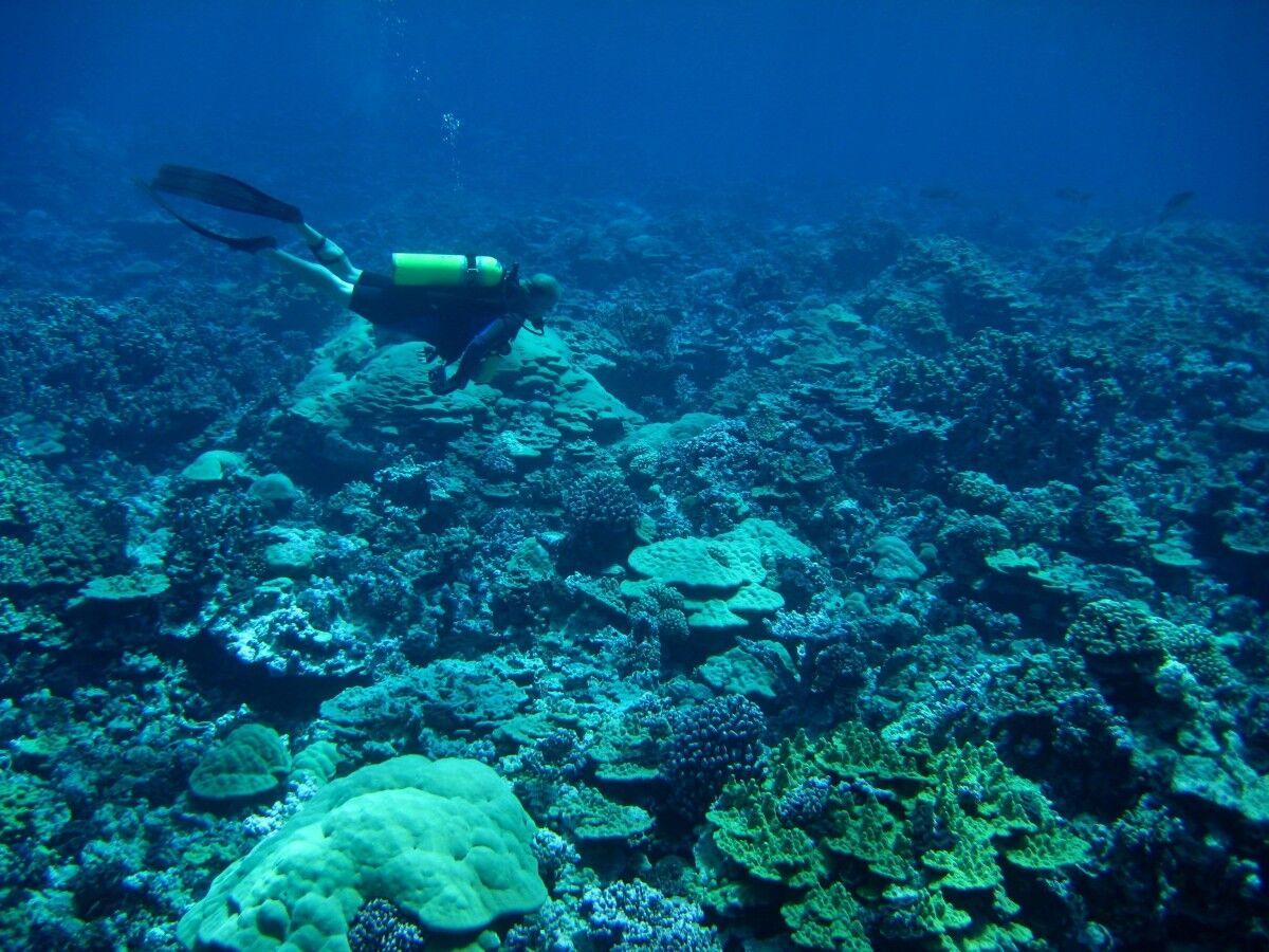 深海热液区探寻气态水 拉曼光谱设备立大功